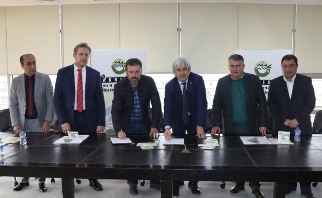 Türkiye'nin tek Zeytin İhtisas OSB'sinde ilk yer teslimleri yapıldı