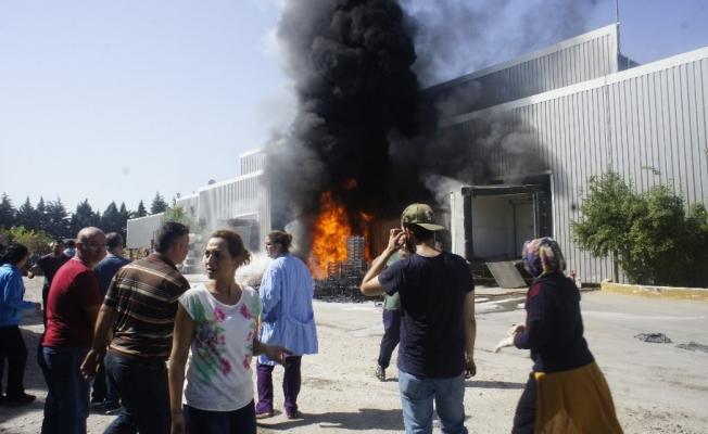 Manisa'da 400 kişinin çalıştığı işletmede yangın çıktı