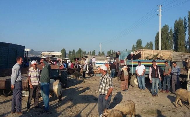 Selendi'de kurbanlıklar pazardaki yerini aldı