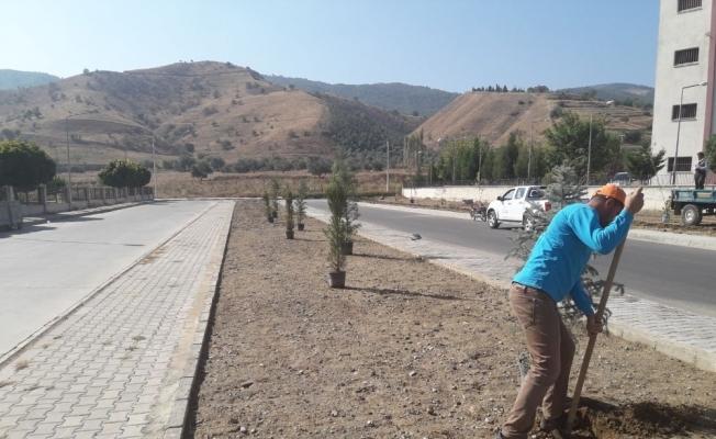 Alaşehir'de park ve caddeler yeşillendiriliyor