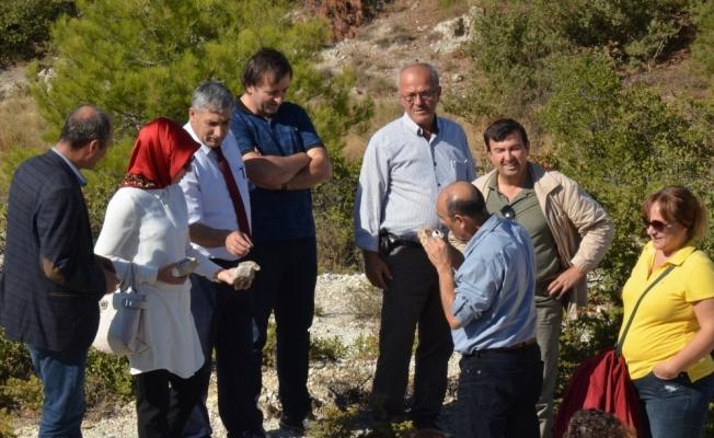 Fosil ağaç alanında bilimsel inceleme yapıldı