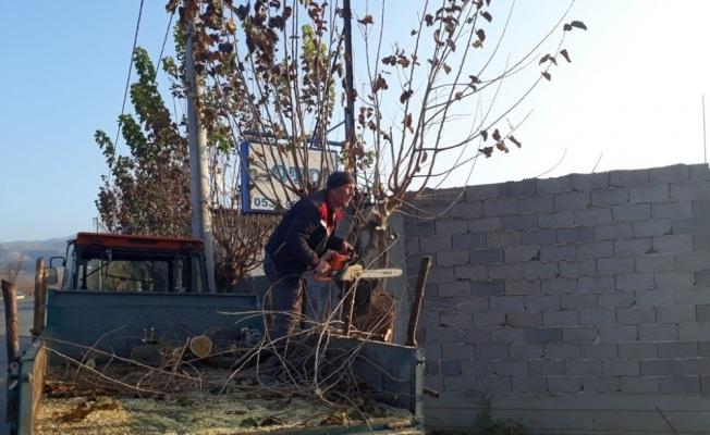 Alaşehir'in park ve sokaklarında kış hazırlığı