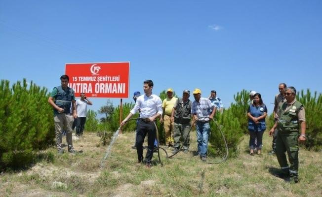 Selendi'de '15 Temmuz Şehitleri Hatıra Ormanı' oluşturuldu