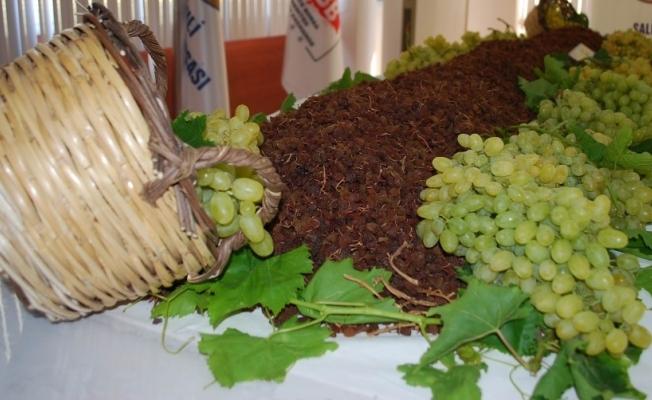 Çekirdeksiz sofralık ve kuru üzümün merkezi Manisa