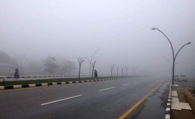 Manisa'da yoğun sis etkisini sürdürüyor