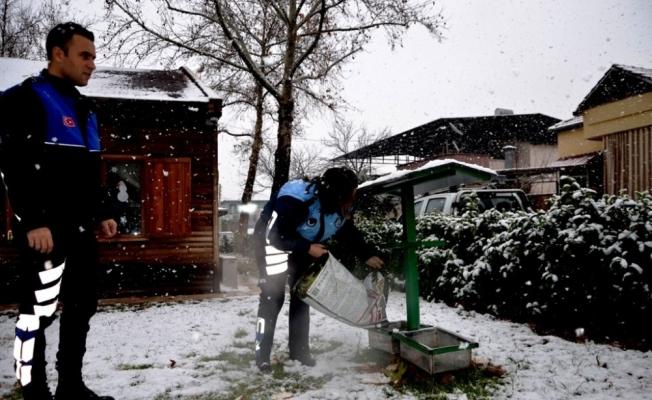 Kar yağışı altındaki ilçede sokak hayvanlarını unutmadılar