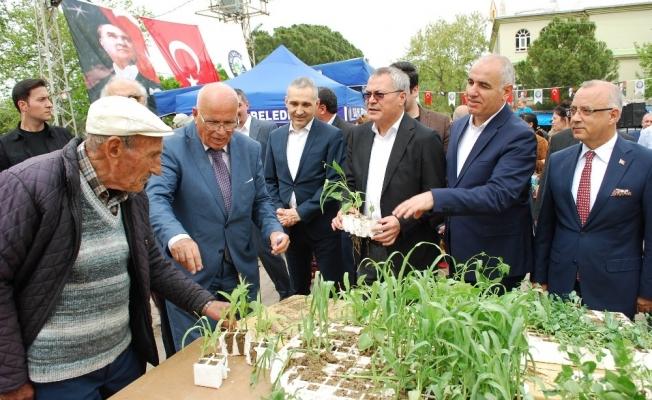 Binlerce tohum Salihli'de takas edildi