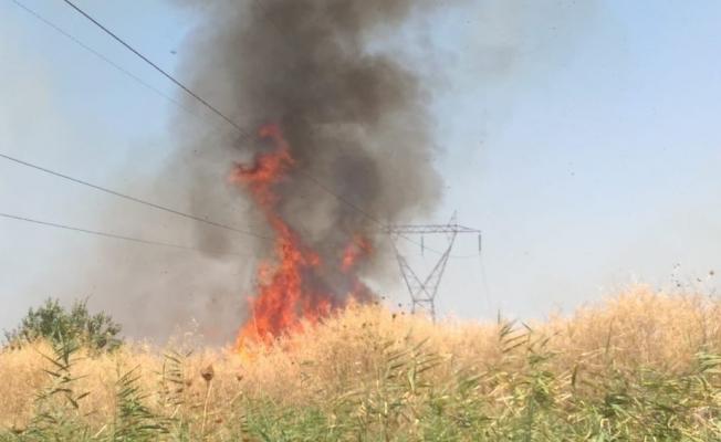 Manisa'da ot yangını korkuttu