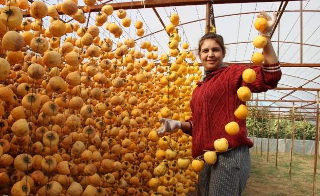 Kuru incire alternatif cennet elması kurusu