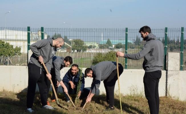 Manisa Büyükşehir'in dev adamları attıkları basket kadar fidan dikti