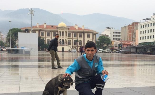 Temizlik işçisi ile sokak köpeğinin kıskandıran dostluğu