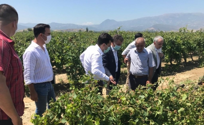 CHP Genel Başkan Yardımcısı Sarıbal Manisa'da