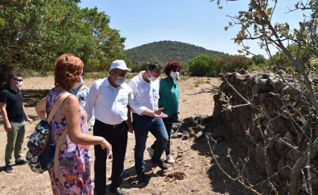 Başkan Çerçi Karaahmetli'de incelemelerde bulundu