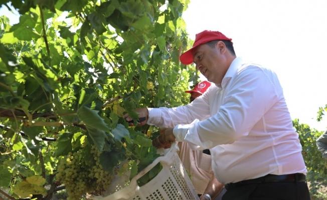 Başkan Dutlulu, üzüm üreticileri ile buluştu