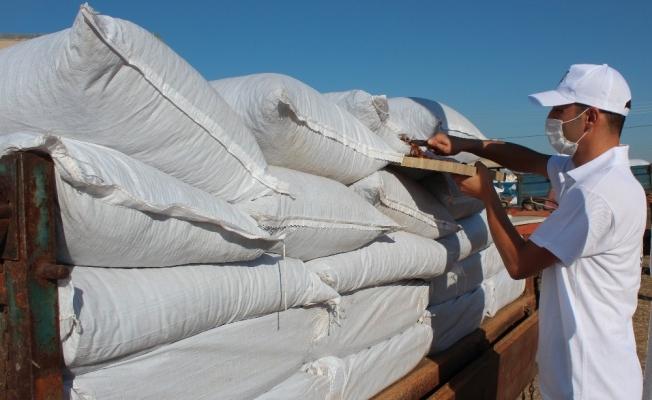 TMO Alaşehir'de alım kontenjanını arttırdı