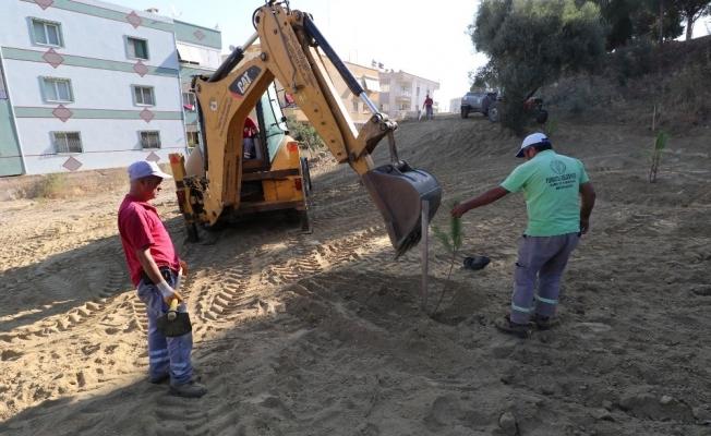 Turgutlu Belediyesi ekiplerinden yol ve ağaçlandırma çalışması
