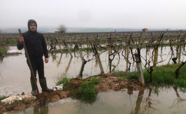 Manisalı çiftçilerin yağmur sevinci
