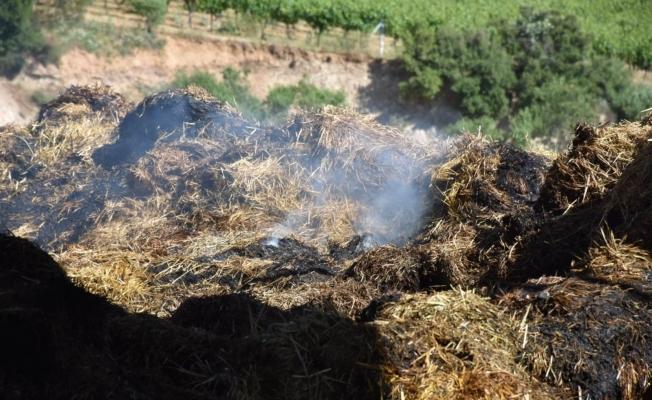 İl Müdürü Öztürk'ten hayvan yetiştiricilerine yangın uyarısı
