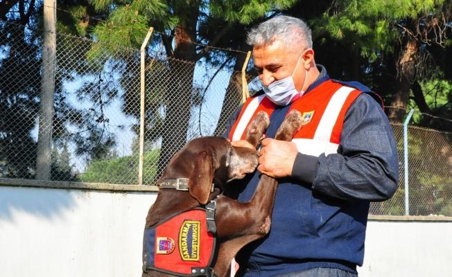 Narkotik köpeği 'Volta' emekli oldu