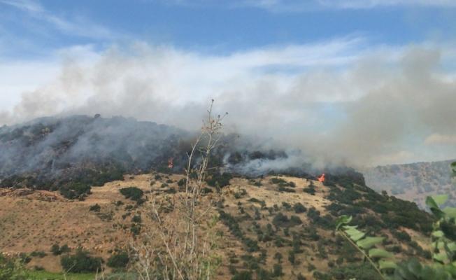 Otluk alanda çıkan yangın ormana sıçradı