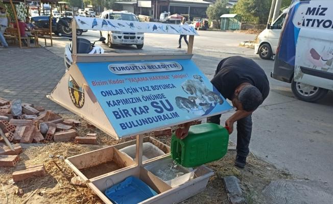 Turgutlu Belediyesinden can dostlara mama ve su desteği