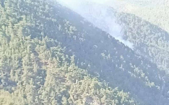 Ormana düşen yıldırım yangına neden oldu