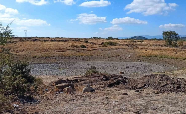 Kırkağaç Söğütalan'da HİS göleti bakıma alındı