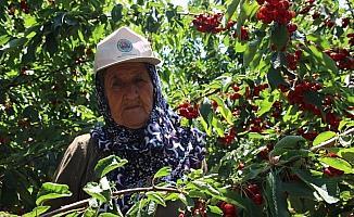 Çiftçinin beklentisi mazot ve gübre fiyatlarının düşmesi