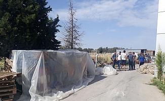 Zeytin hırsızları yakalandı, 5 kişi tutuklandı