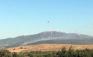 Soma'da 6 hektarlık ormanlık alan yangında zarar gördü