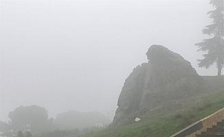 Manisa'da sis etkili oldu