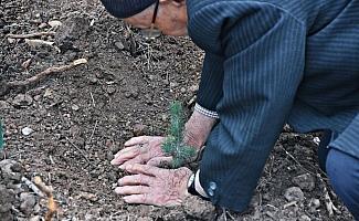 Akhisar Belediyesi ve kaymakamlığının desteğiyle 27 bin fidan toprakla buluştu
