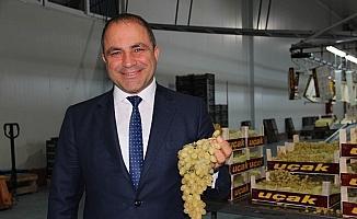 Manisa'dan 32 ülkeye Sultaniye üzüm ihracatı