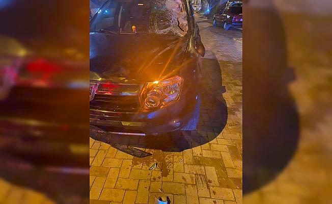 Başıboş atlar otomobilin üzerine çıktı, sürücü neye uğradığını şaşırdı