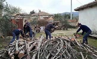 Şehit annesinin odunlarını jandarma kırdı