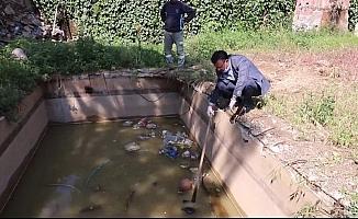 Havuzda boğulmak üzere olan kaplumbağayı başkan kurtardı