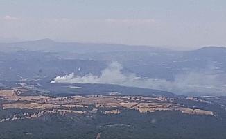Manisa'da orman yangını kontrol altına alındı
