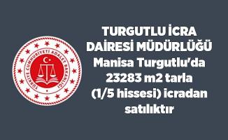 Manisa Turgutlu'da 23283 m2 tarla (1/5 hissesi) icradan satılıktır