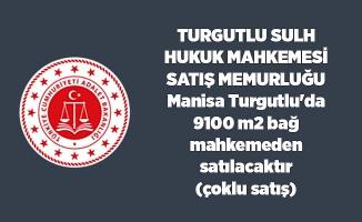 Manisa Turgutlu'da 9100 m2 bağ mahkemeden satılacaktır(çoklu satış)