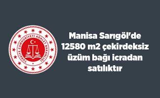 Manisa Sarıgöl'de 12580 m2 çekirdeksiz üzüm bağı icradan satılıktır